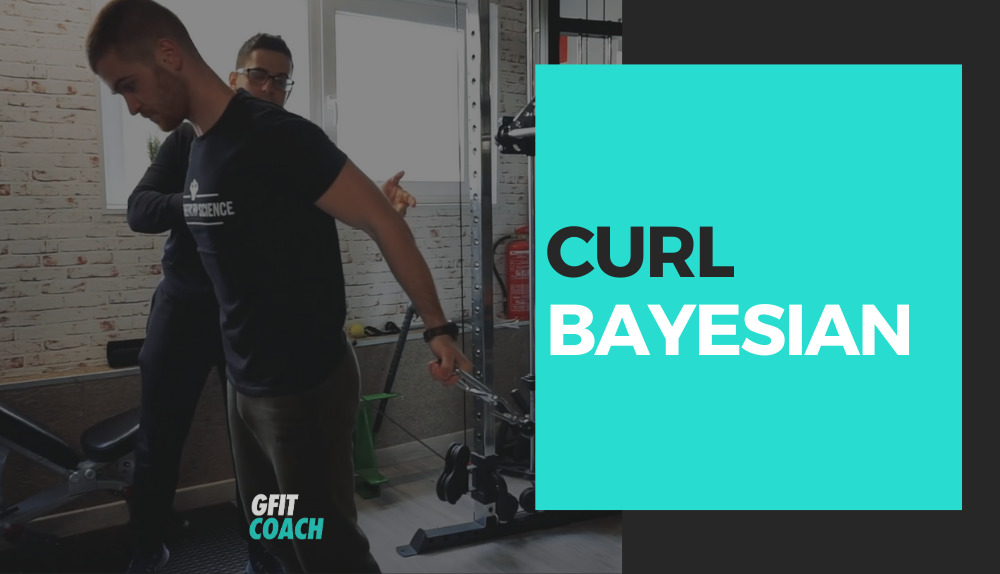 Curl Bayasi